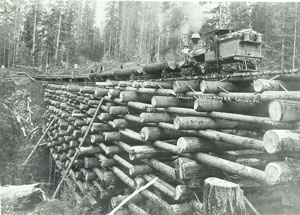 Album Of Logging History
